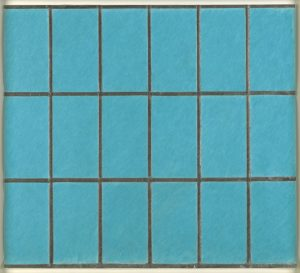 Light blue rectangles in outlined grid